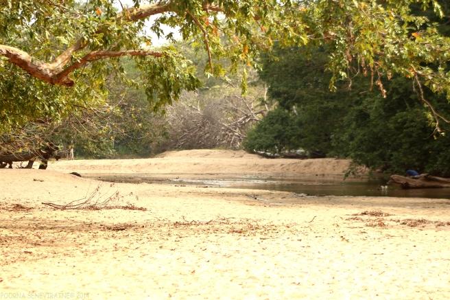 The Menik River